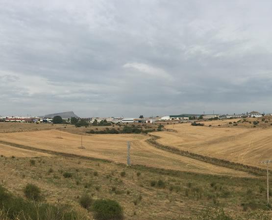 Polígono Las Casas